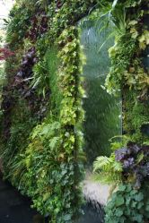 vertikaler Wasser-Garten_1
