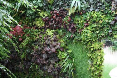 vertikaler Wasser-Garten_5