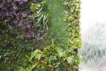 vertikaler Wasser-Garten_6