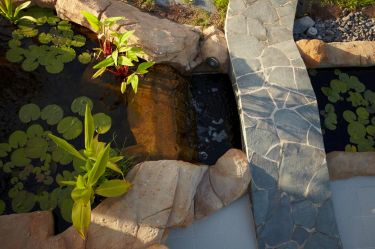Pool Wasserfall und Höhle_7